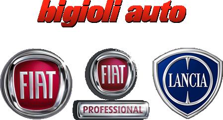 Fiat, Lancia, Fiat professional